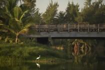 arquillano Recorrido Arquitectónico: Jardines del St. Regis Bahía Beach Resort